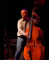Double Bass by KeldBach