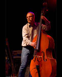 Double Bass by KeldBach