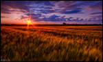 Sunset at the Countryside