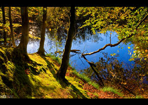Early Autumn Mood by KeldBach