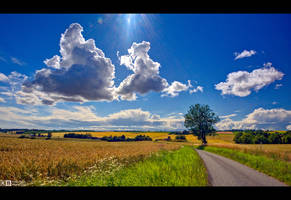 Summertime by KeldBach