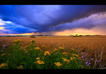 Local Showers by KeldBach
