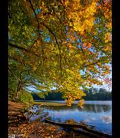 Golden Days by KeldBach
