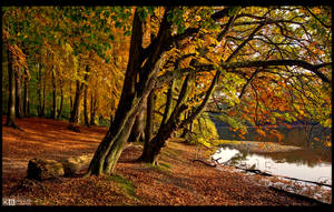 Falling for Fall by KeldBach