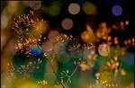 Not All That Glitters... by KeldBach
