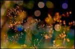 All That Glitters... by KeldBach
