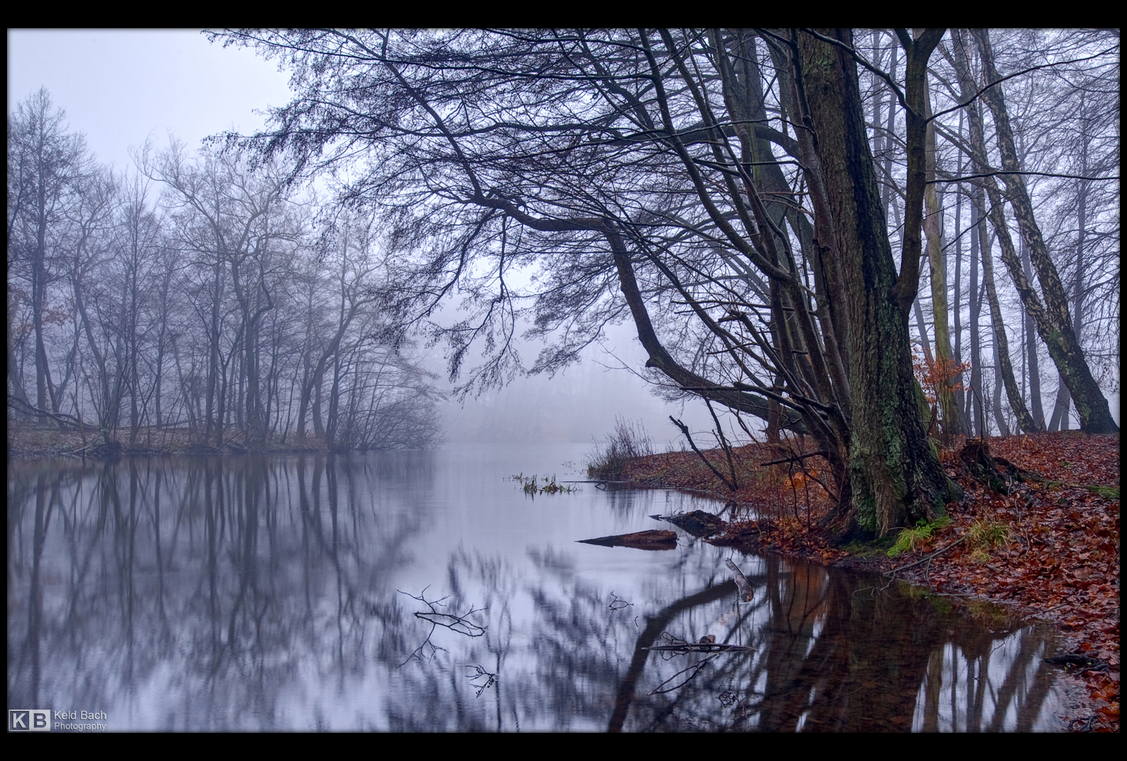 Foggy Day by KeldBach