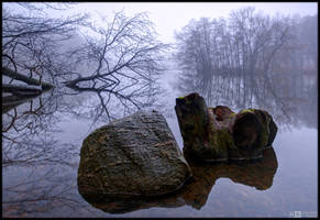 Rock and Stump by KeldBach