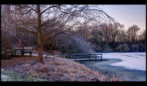 Frosty Morning in the Park by KeldBach