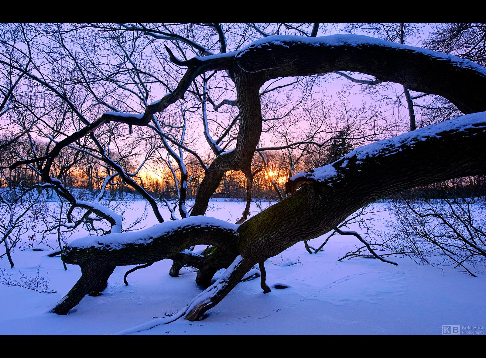 Winter on Fire by KeldBach