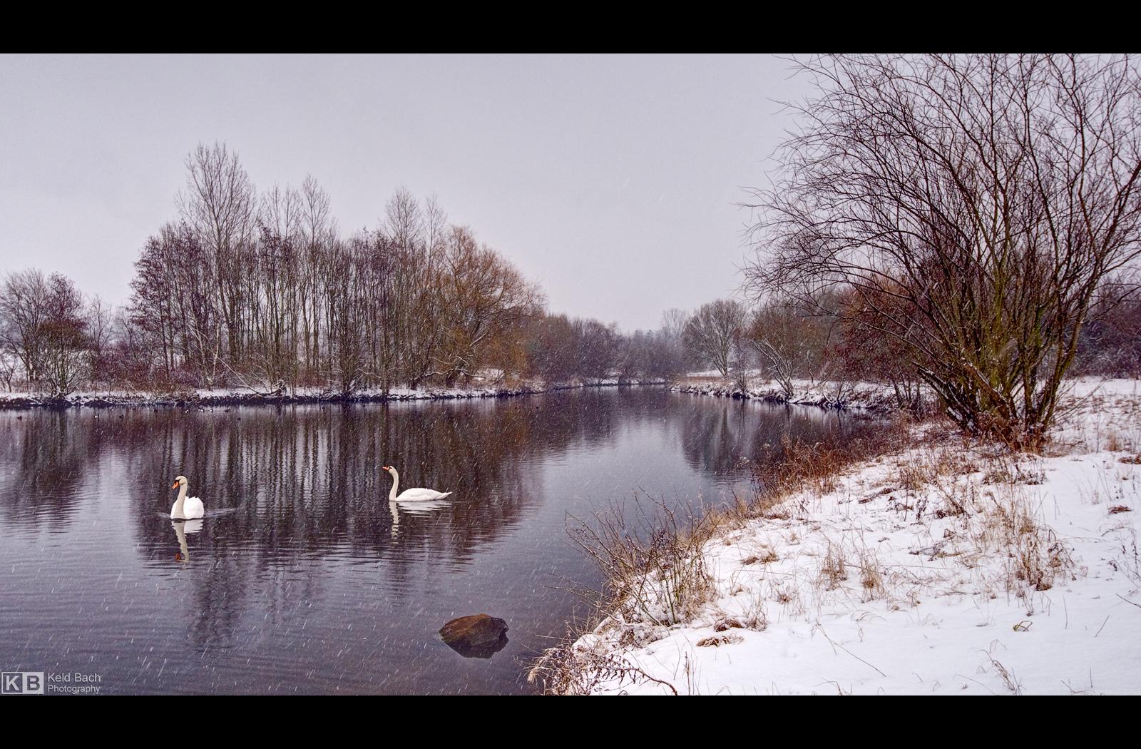 Braving the Cold by KeldBach