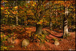 Happy Fall by KeldBach