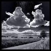 Playful Sky in B/W by KeldBach