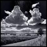 Playful Sky in B/W