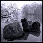 Rock and Stump in Mono