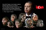 Turkish Evolution by KeldBach
