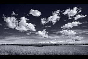 Summer Sky in B/W by KeldBach