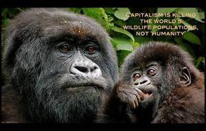 Capitalism is Killing the World's Wildlife by KeldBach