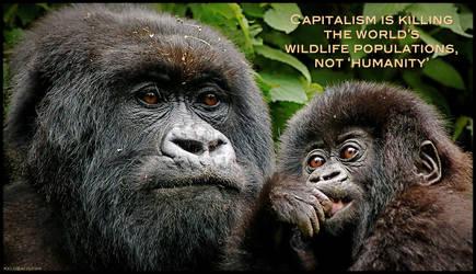 Capitalism is Killing the World's Wildlife
