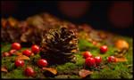 Warm Autumn Mood by KeldBach