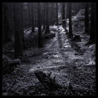 Just Follow the Light in Mono by KeldBach