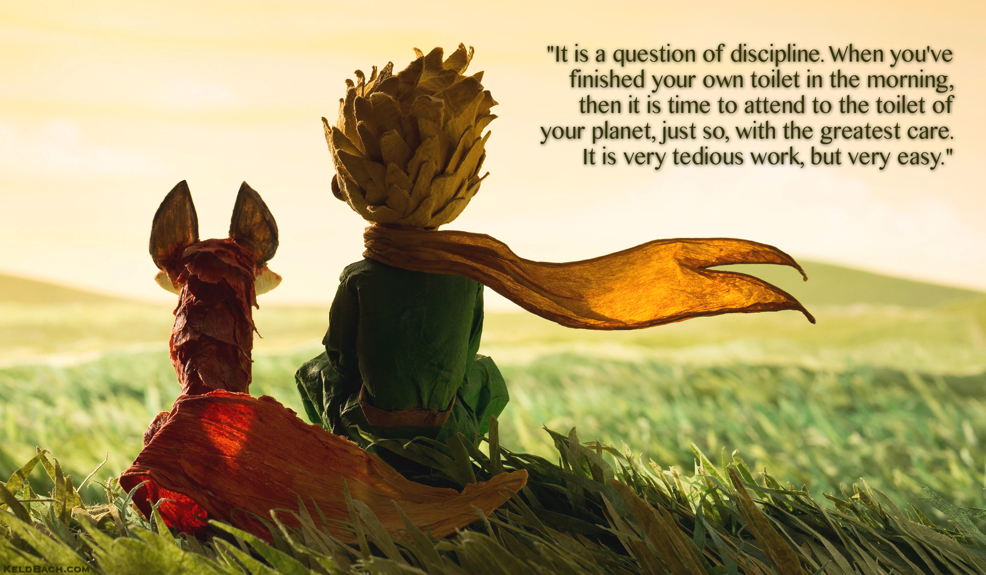 A Question of Discipline