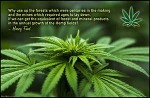Save the Trees - Grow Hemp