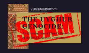The Uyghur Genocide? Uyghur Detention Camps?