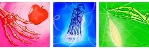 Skeletal Disney Princesses by liminowl