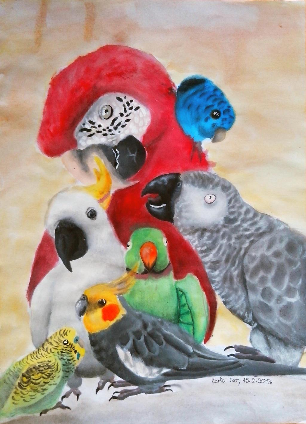 Parrots by pringlesaddict99