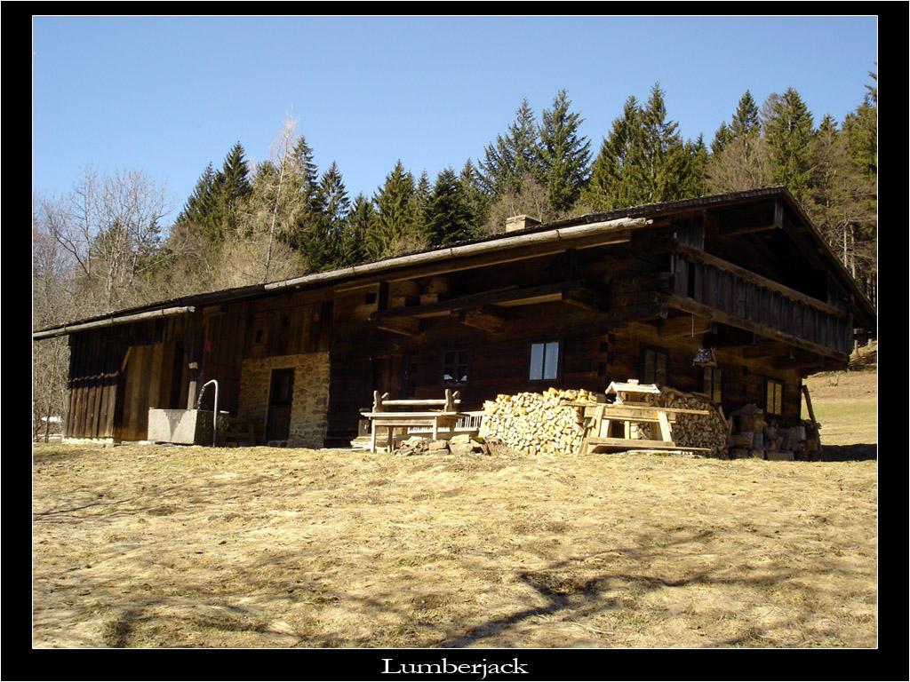 Lumberjack by avireX