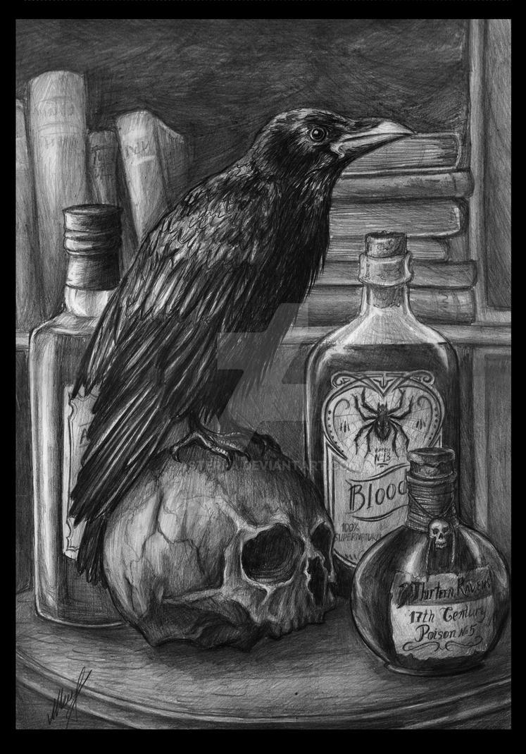 Corvus by Asteri-A
