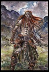 viking by Asteri-A