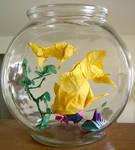 Origami: Fishbowl