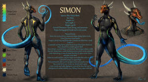 Commission: Simonthedigger Ref Sheet by rajewel