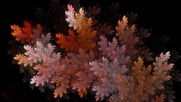 Foglie D'Autunno (Autumn Leaves)