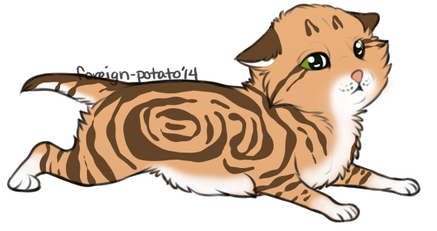 Kitten Result for Rosewing by cj-scribbles