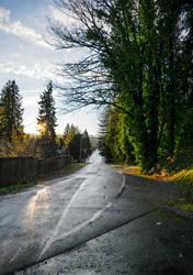 Driveway by Blackhole12