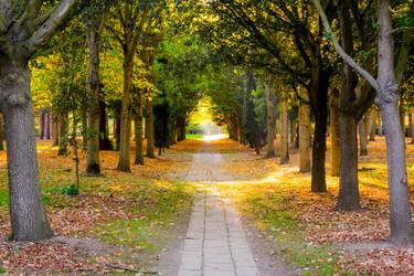 Milton Keynes Park by Blackhole12