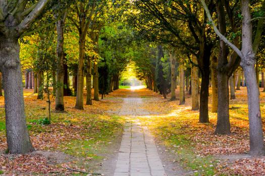 Milton Keynes Park