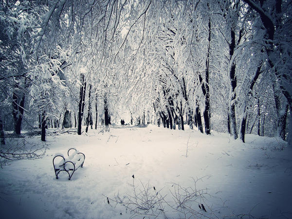 Zimska idila - Page 3 Winter_Tale_by_Valcom2the