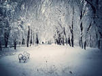 Winter Tale by Valcom2the