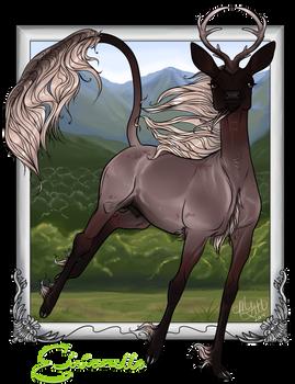 Eirianell | Buck | Herd Member
