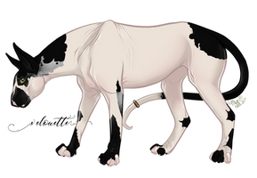 Velouette | Maer | Talonbait Catwife