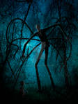 Slender Man and the Lost Soul
