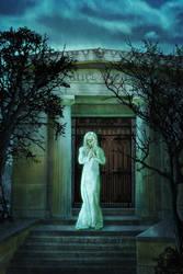 Alice Walks book cover