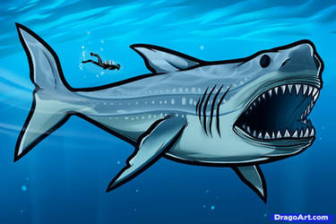 Megalodon drawning by southparkcharcters