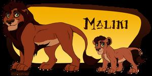 [Ref]-Maliki