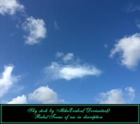 Sky #1 Stock by MikuEvalon