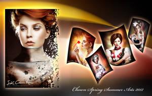 Spring Summer Arts 2012 Poster